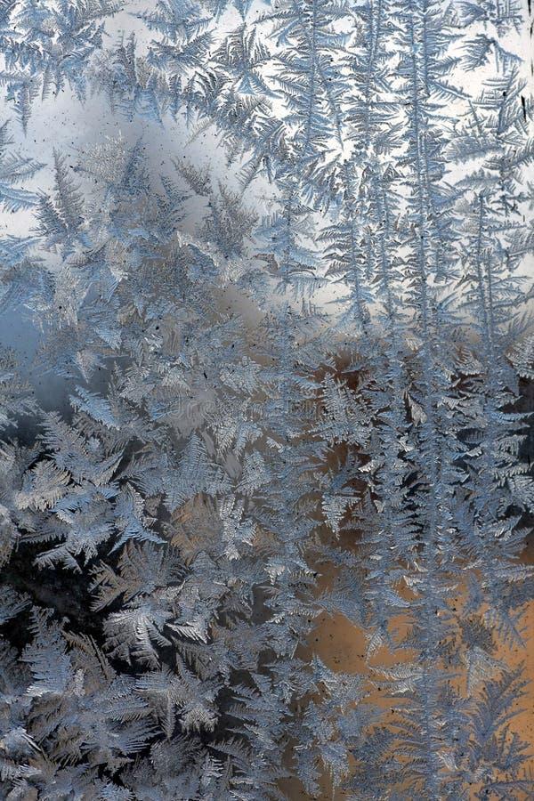 Fiori del ghiaccio sull'inverno delle finestre fotografia stock libera da diritti