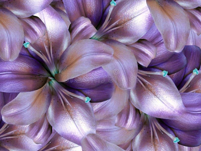 Fiori del giglio fondo viola-nacrous luminoso collage floreale Composizione nel fiore illustrazione di stock