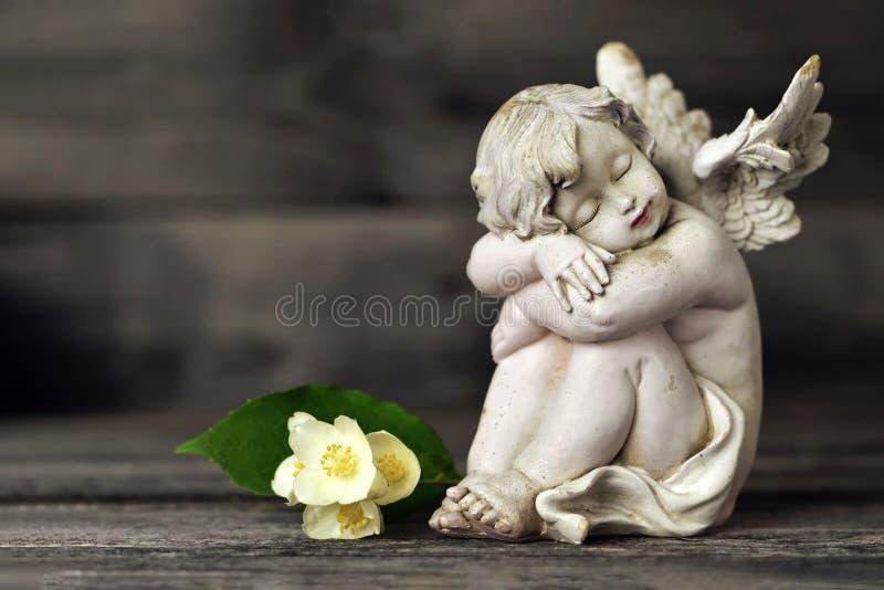 Fiori del guardiano e del gelsomino di angelo su fondo di legno fotografia stock