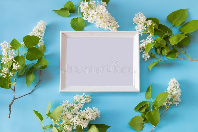 Fiori del lillà bianco e del telaio bianco su fondo blu fotografia stock libera da diritti