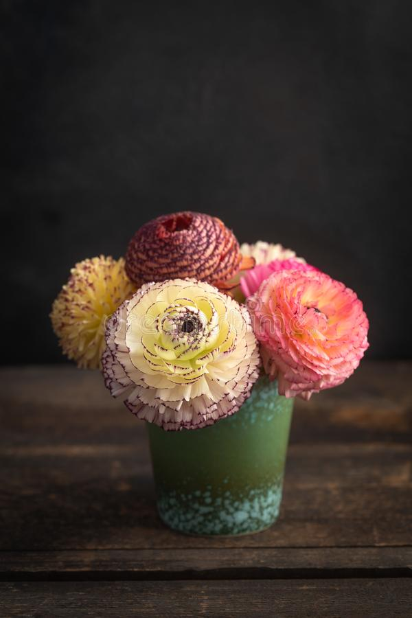 Fiori del ranunculus in un vaso fotografie stock