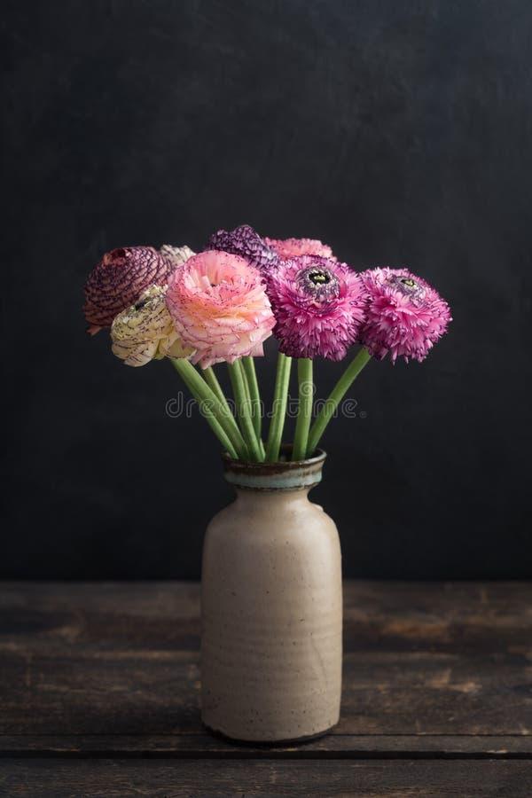 Fiori del ranunculus in un vaso immagini stock