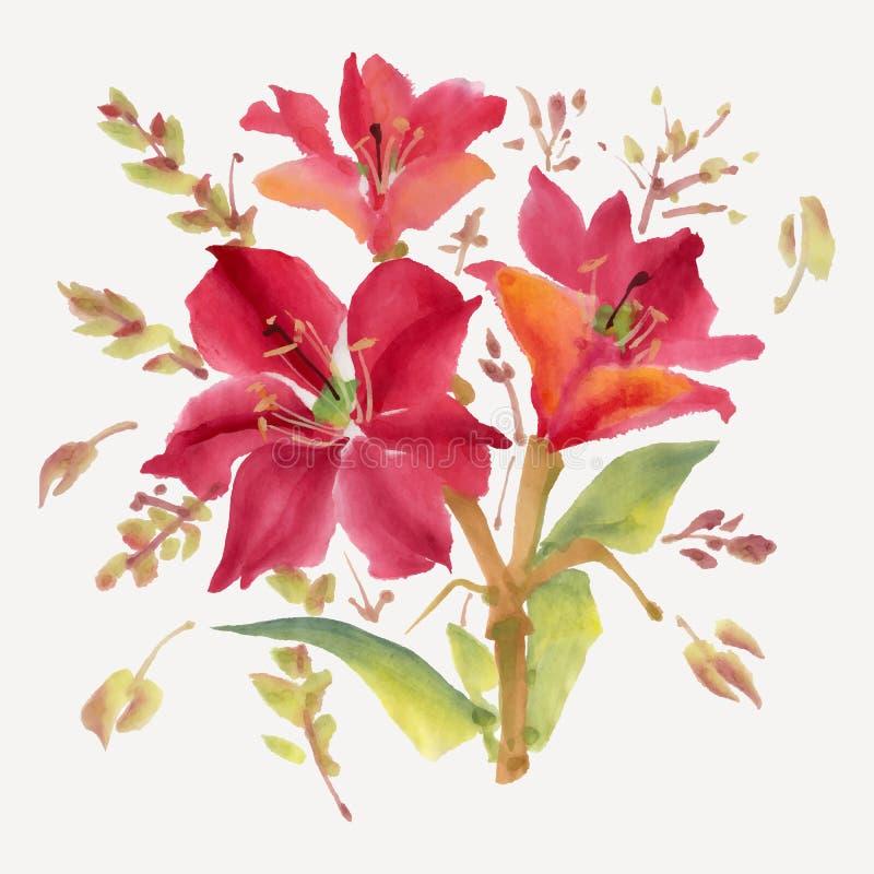 Download Fiori dell'acquerello illustrazione vettoriale. Illustrazione di fioritura - 55364641