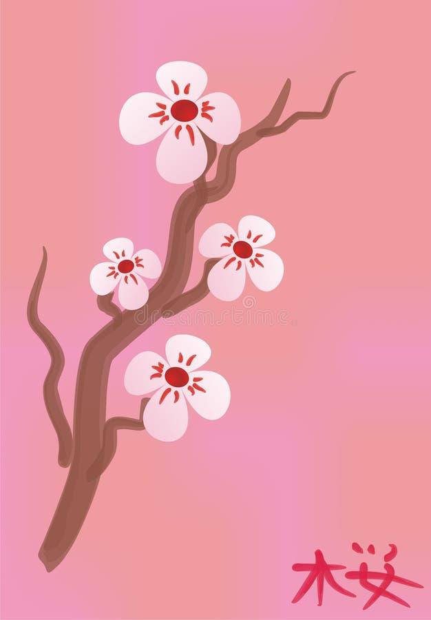 Fiori dell'albero del Giappone fotografia stock