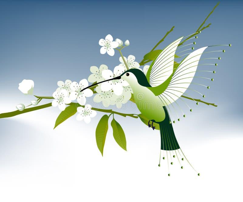 fiori dell'uccello che ronzano illustrazione di stock