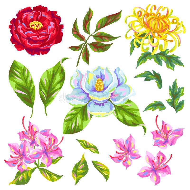Fiori della cina messi germogli luminosi della magnolia for Magnolia pianta prezzi
