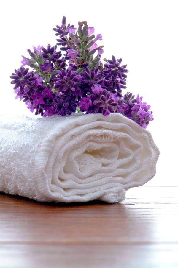 Fiori della lavanda sul tovagliolo di bagno bianco in stazione termale immagini stock