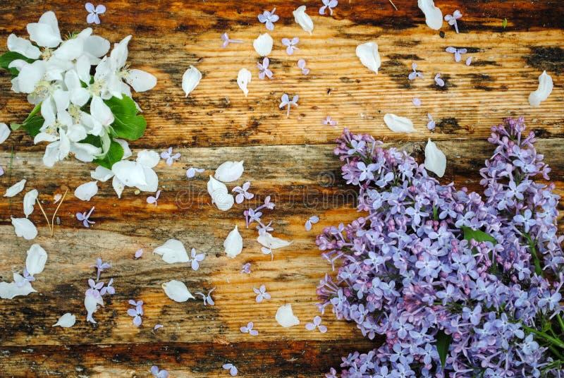Fiori della mela e del lillà sulla tavola di legno fotografia stock libera da diritti
