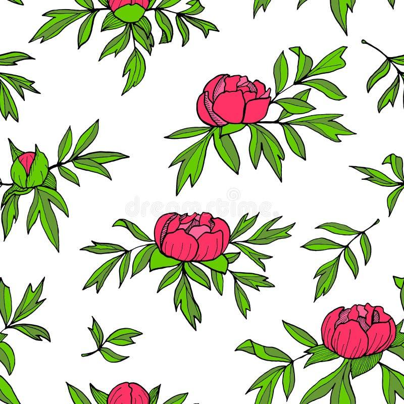 Fiori della peonia, germogli, modello senza cuciture delle foglie Illustrazione floreale disegnata a mano isolata su fondo bianco illustrazione di stock