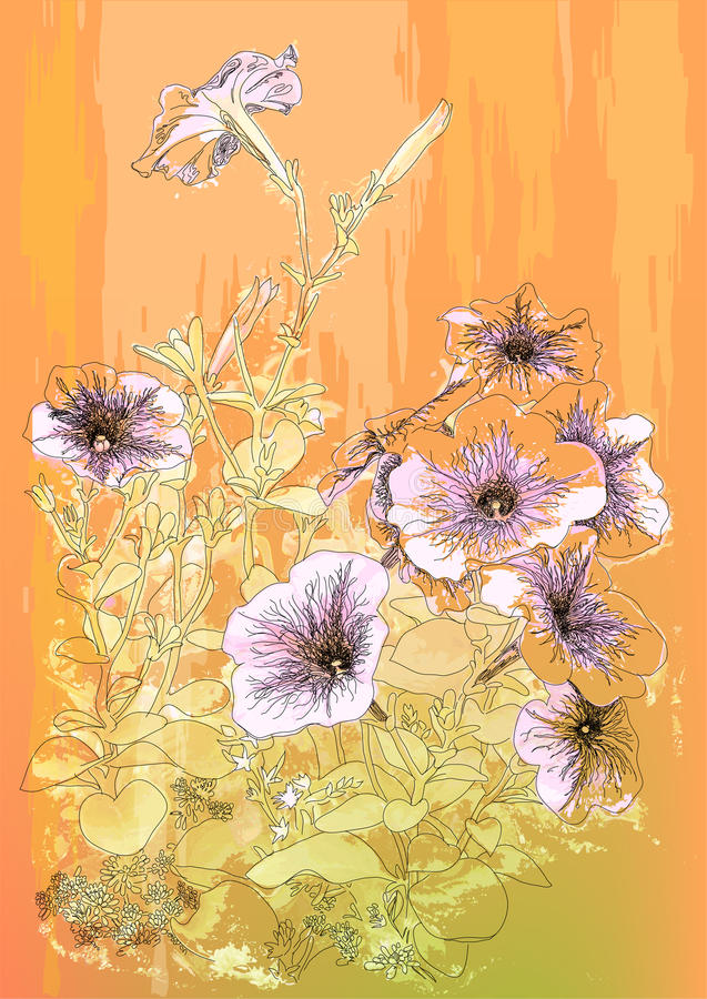 Fiori della petunia illustrazione vettoriale
