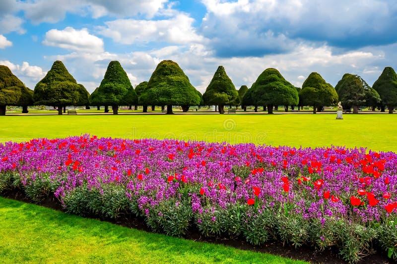 Fiori della primavera nel giardino del Hampton Court, Londra, Regno Unito fotografia stock