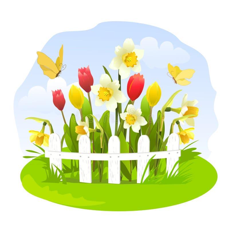 Fiori della primavera in un piccolo giardino royalty illustrazione gratis