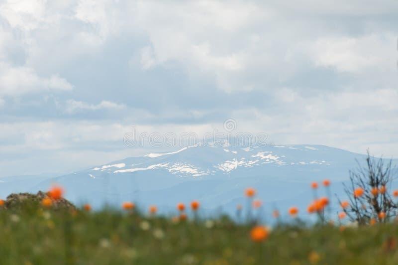 Fiori delle nuvole delle montagne di struttura fotografia stock