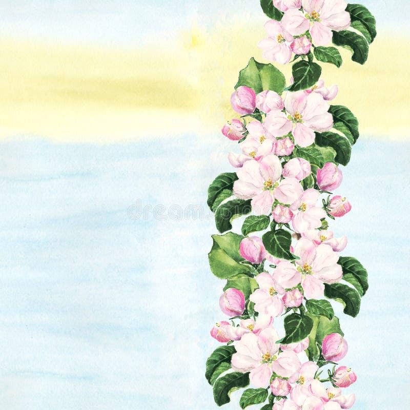 Fiori dentellare del Apple Bordo floreale senza giunte Bordo dipinto acquerello botanico sul fondo variopinto royalty illustrazione gratis