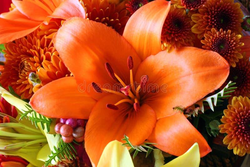 Fiori di autunno fotografia stock
