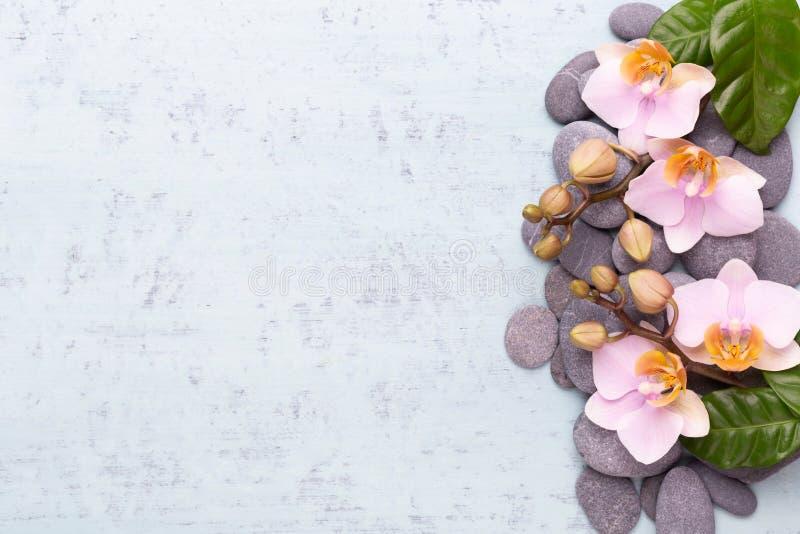 Fiori di bellezza dell'orchidea su fondo d'annata Fondo della stazione termale, terapia della stazione termale, bellezza Stazione immagini stock