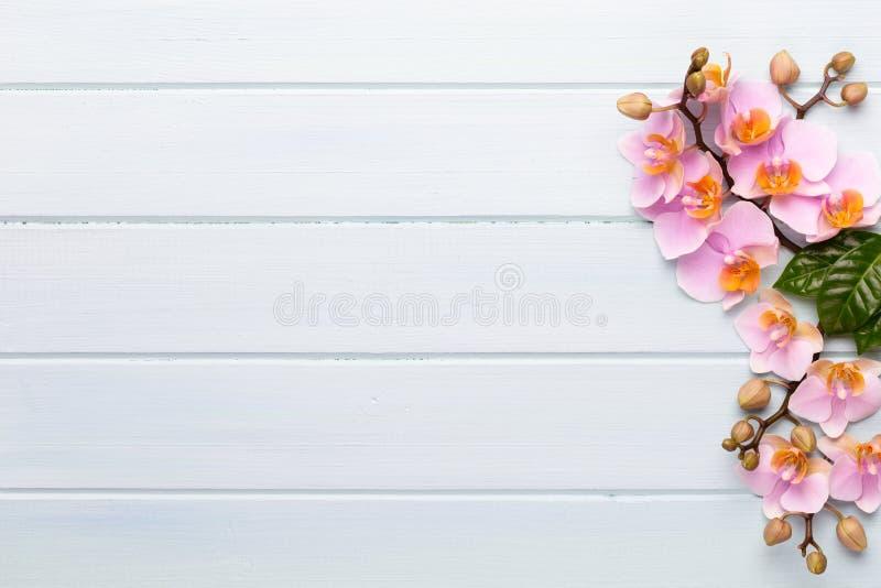 Fiori di bellezza dell'orchidea su fondo d'annata Fondo della stazione termale, terapia della stazione termale, bellezza Stazione fotografia stock libera da diritti