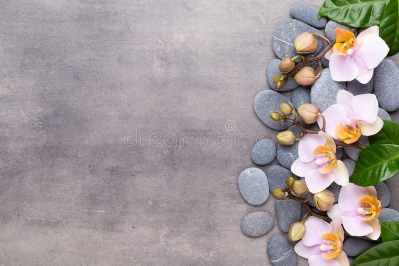 Fiori di bellezza dell'orchidea su fondo d'annata Fondo della stazione termale, terapia della stazione termale, bellezza Stazione fotografie stock