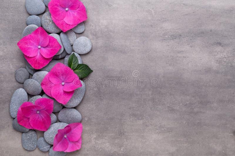 Fiori di bellezza dell'orchidea su fondo d'annata Fondo della stazione termale, terapia della stazione termale, bellezza Stazione fotografia stock