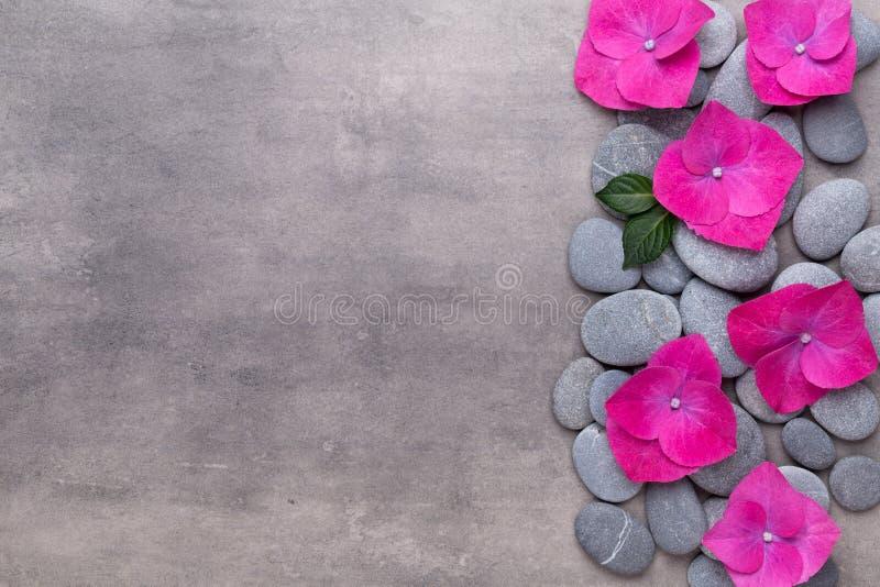Fiori di bellezza dell'orchidea su fondo d'annata Fondo della stazione termale, terapia della stazione termale, bellezza Stazione fotografie stock libere da diritti