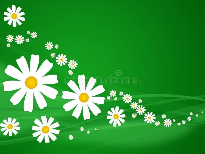 Fiori di estate su verde illustrazione vettoriale