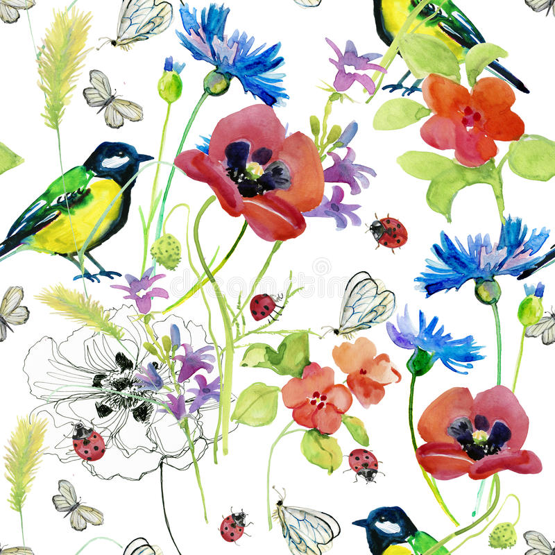Fiori di fioritura del bello dell'acquerello giardino di estate illustrazione vettoriale