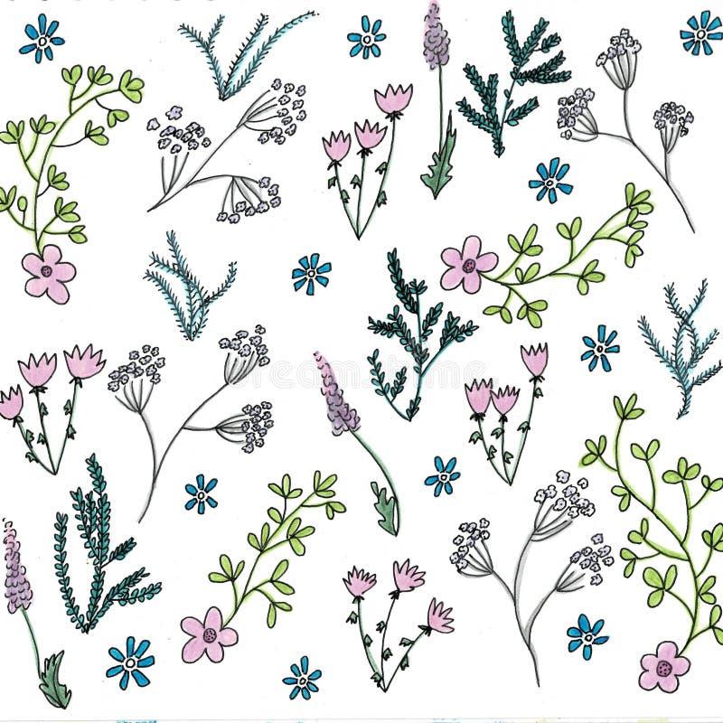 Fiori di fioritura della pittura del profilo e della mano del giardino di estate luminosa d'avanguardia molti genere di floreale  illustrazione vettoriale
