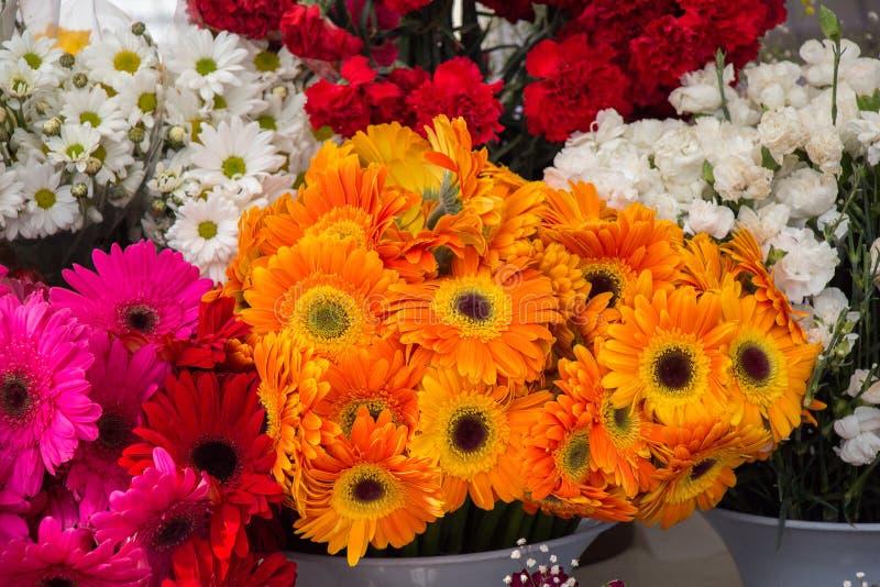 Fiori di fioritura variopinti in vaso immagini stock