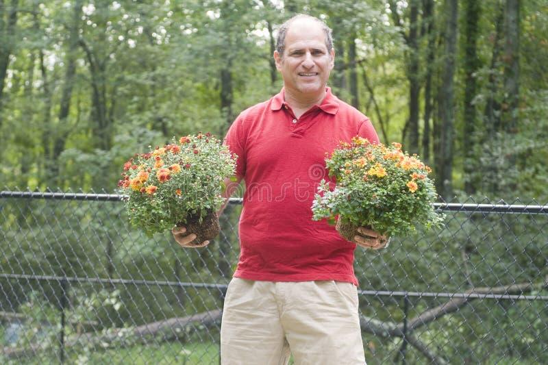 Fiori di giardinaggio del proprietario di abitazione maschio all'aperto fotografia stock libera da diritti