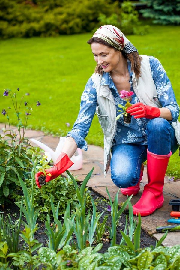 Fiori di trapianto del bello giardiniere della donna immagine stock