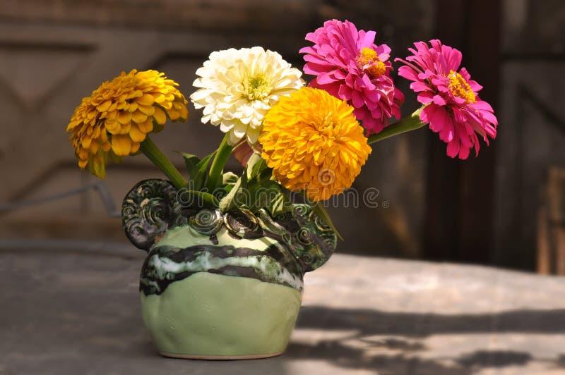 Fiori di zinnia in vaso immagini stock libere da diritti
