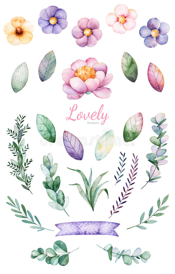 Fiori dipinti a mano dell'acquerello, foglie e unicorno sveglio illustrazione vettoriale