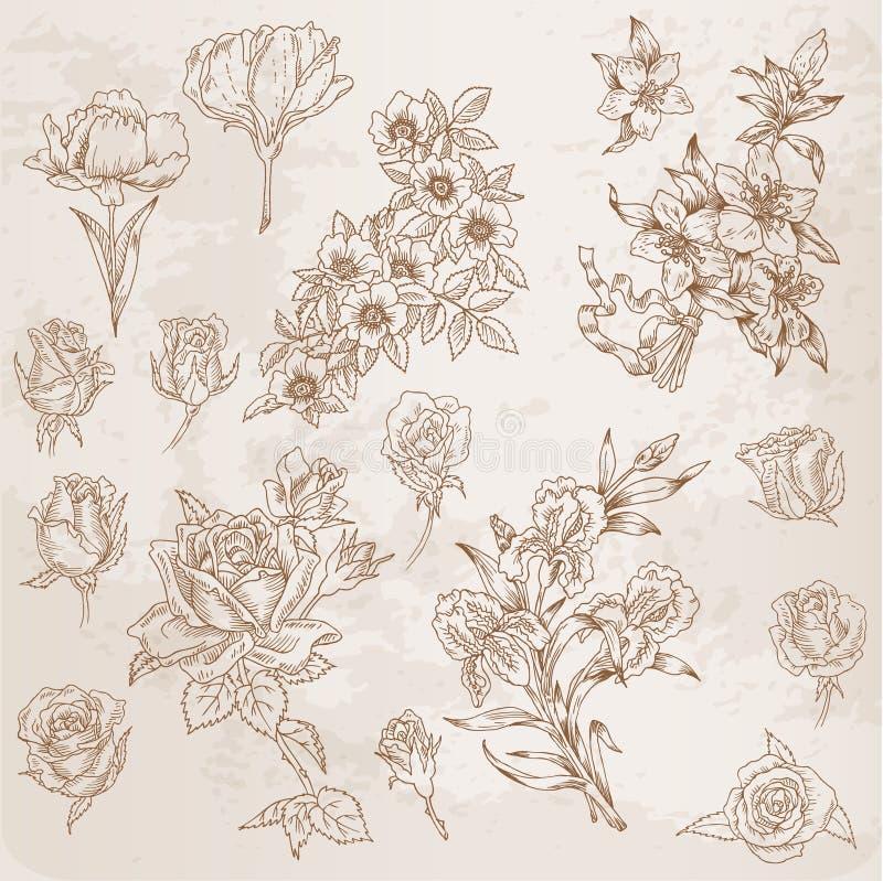 Fiori disegnati a mano dettagliati illustrazione vettoriale