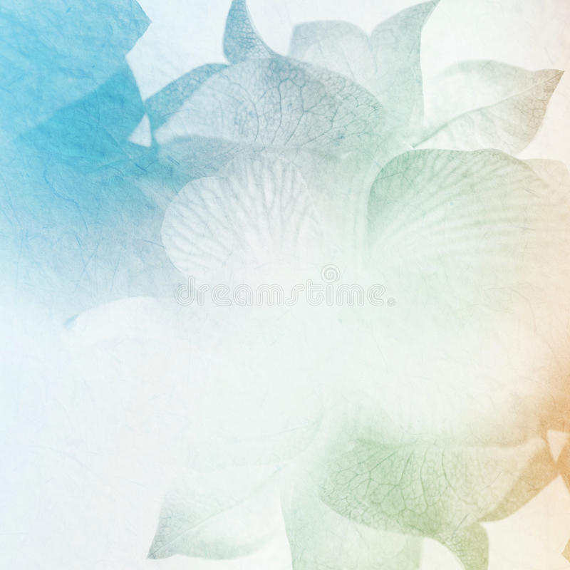 Download Fiori Dolci Nello Stile D'annata Di Colore Su Struttura Della Carta Del Gelso Immagine Stock - Immagine di macro, celebrazione: 55364169