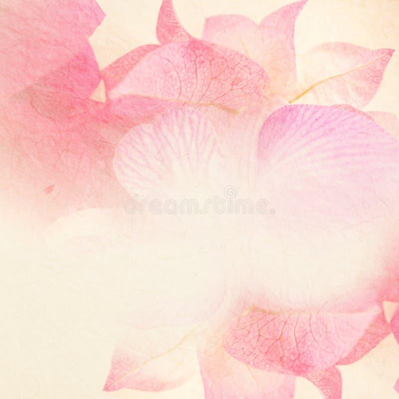 Download Fiori Dolci Nello Stile D'annata Di Colore Su Struttura Della Carta Del Gelso Fotografia Stock - Immagine di colori, macro: 55364590
