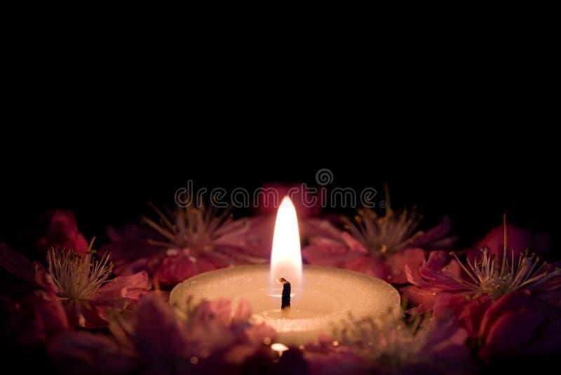 Fiori e candela fotografia stock