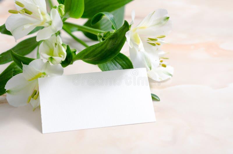 Fiori e carta di carta in bianco fotografia stock libera da diritti