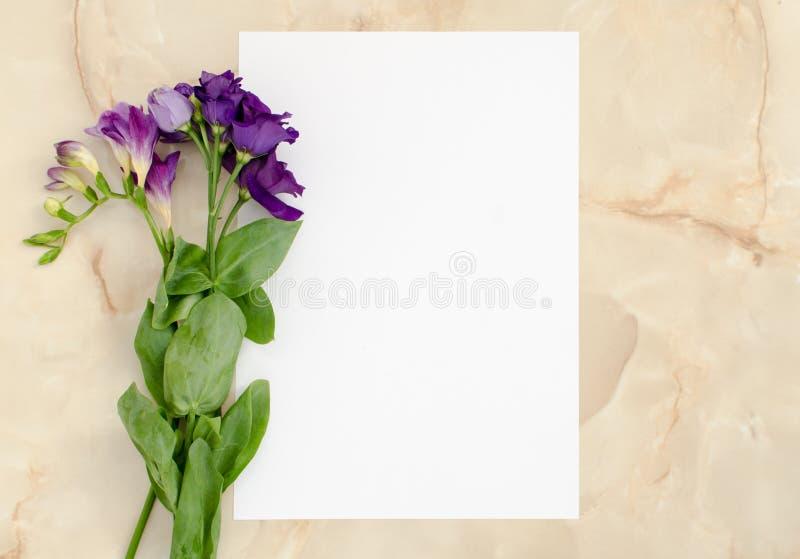 Fiori e carta di carta in bianco fotografia stock
