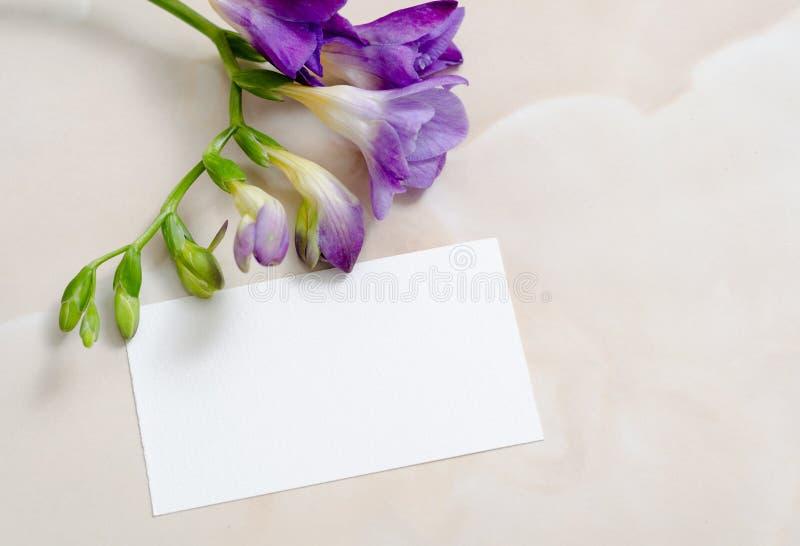 Fiori e carta di carta in bianco immagine stock libera da diritti
