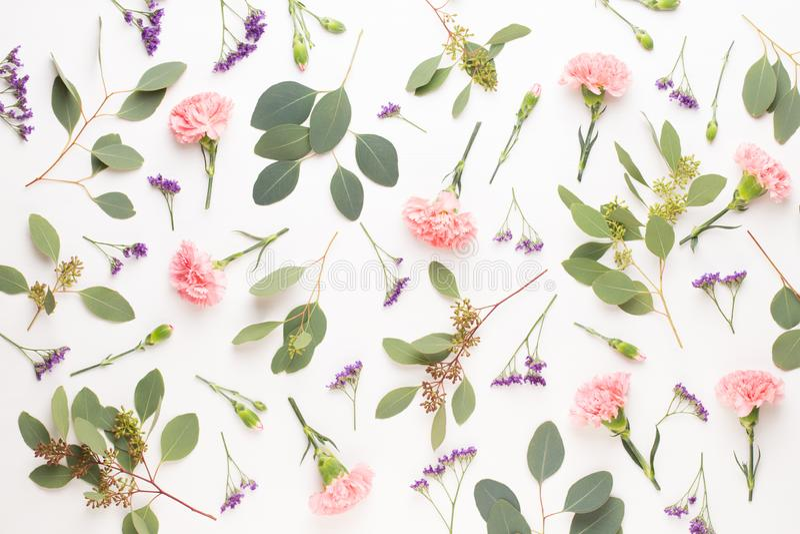 Fiori e composizione nell'eucalyptus Modello fatto di vari fiori variopinti su fondo bianco Vita posta piana dello stiil immagine stock