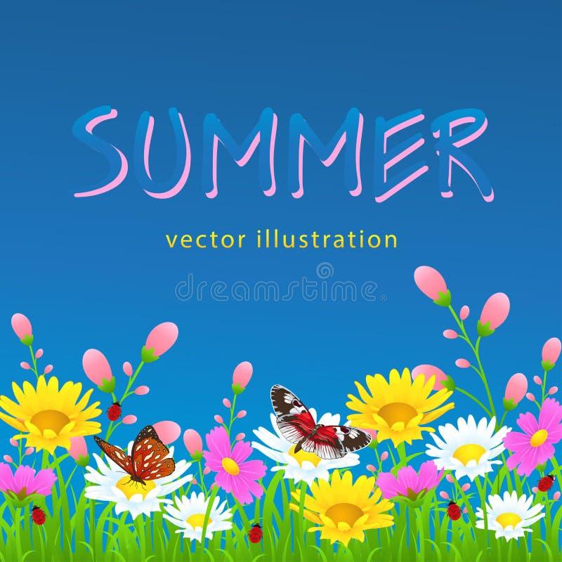 Fiori e confine dell'erba, fiori variopinti luminosi del prato ed erba verde, farfalle e coccinella contro il cielo blu royalty illustrazione gratis