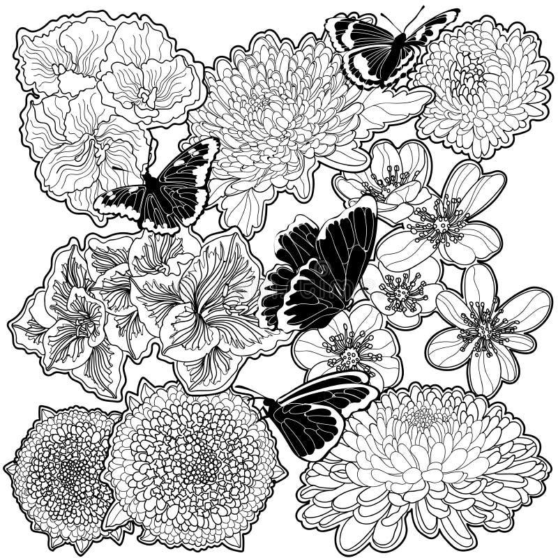 fiori e farfalle in bianco e nero immagini stock