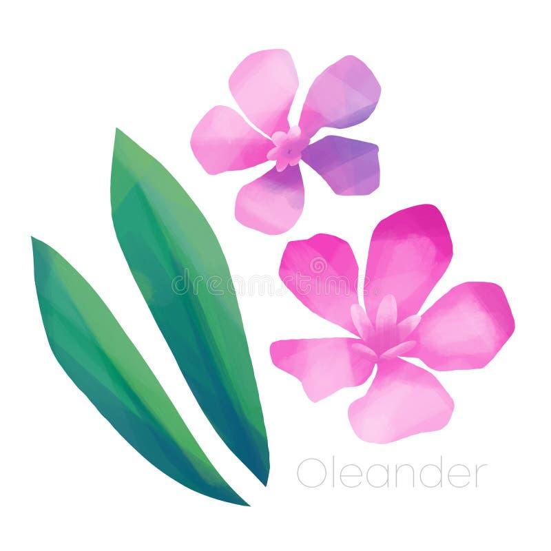 Fiori e foglie rosa dell'oleandro royalty illustrazione gratis
