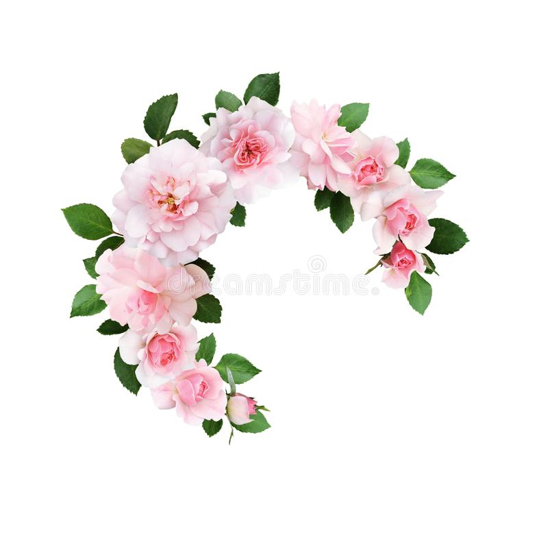Fiori e foglie verdi della rosa di rosa in una disposizione floreale rotonda fotografia stock libera da diritti