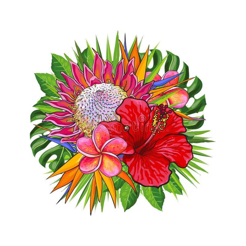 Fiori e foglie verdi tropicali in composizione floreale decorativa nella forma di cerchio royalty illustrazione gratis