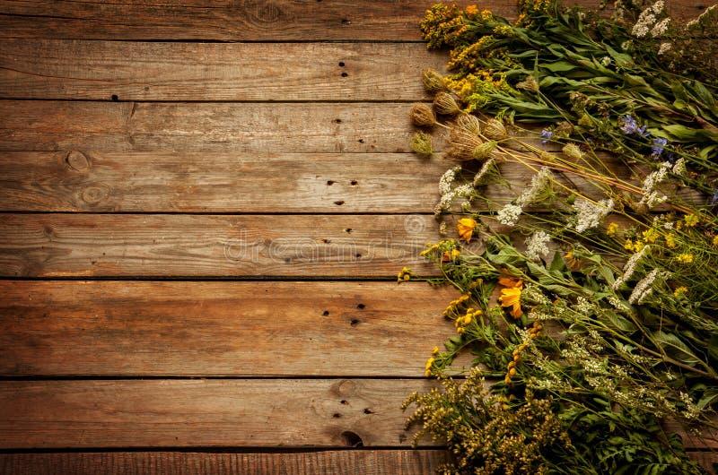 Fiori e piante naturali del prato di fine dell'estate su fondo di legno d'annata immagine stock
