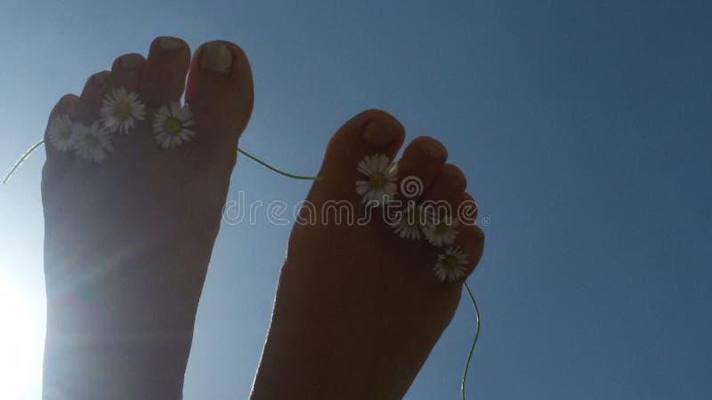 Fiori e piedi immagine stock libera da diritti