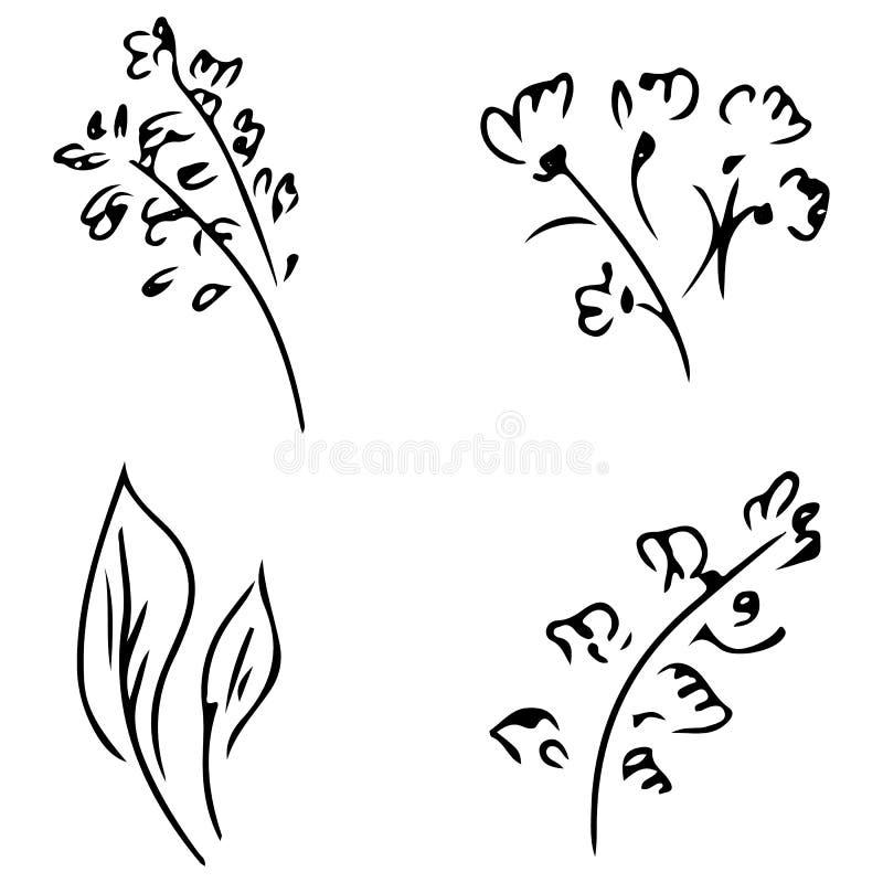 Fiori e rami isolati su fondo bianco Raccolta disegnata a mano di scarabocchio r grande insieme di vettore illustrazione di stock