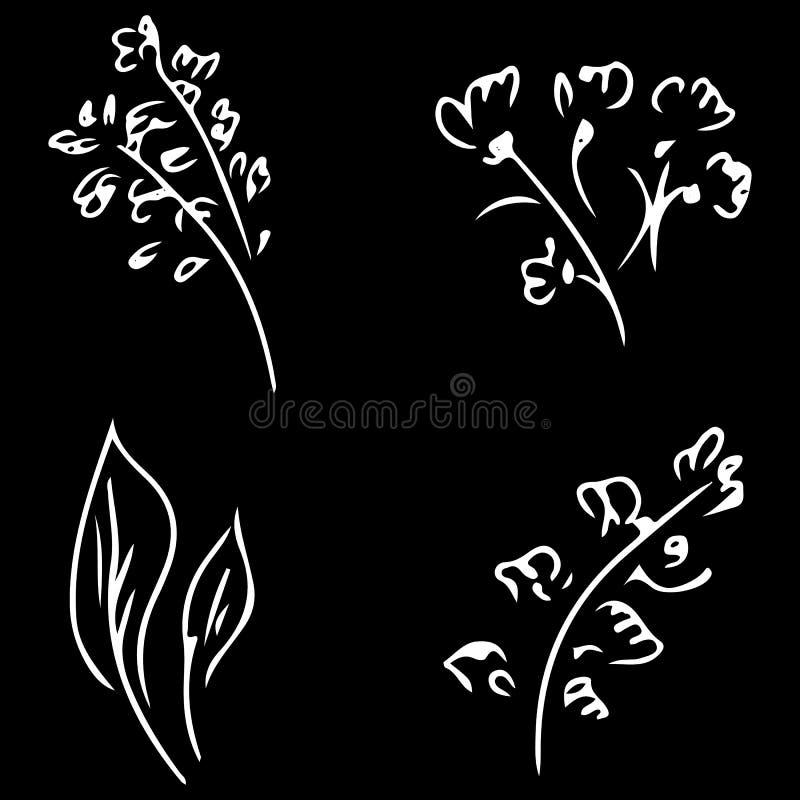 Fiori e rami isolati su fondo nero Raccolta disegnata a mano di scarabocchio r grande insieme di vettore illustrazione vettoriale