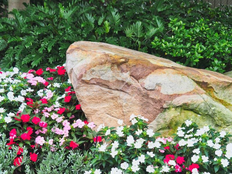 Fiori e roccia Colourful dell'arenaria in giardino fotografie stock
